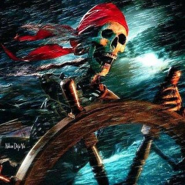 Basescu pirat