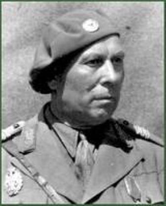 avramescu general