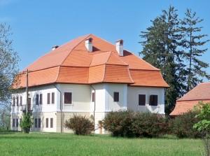 castel simbata 1