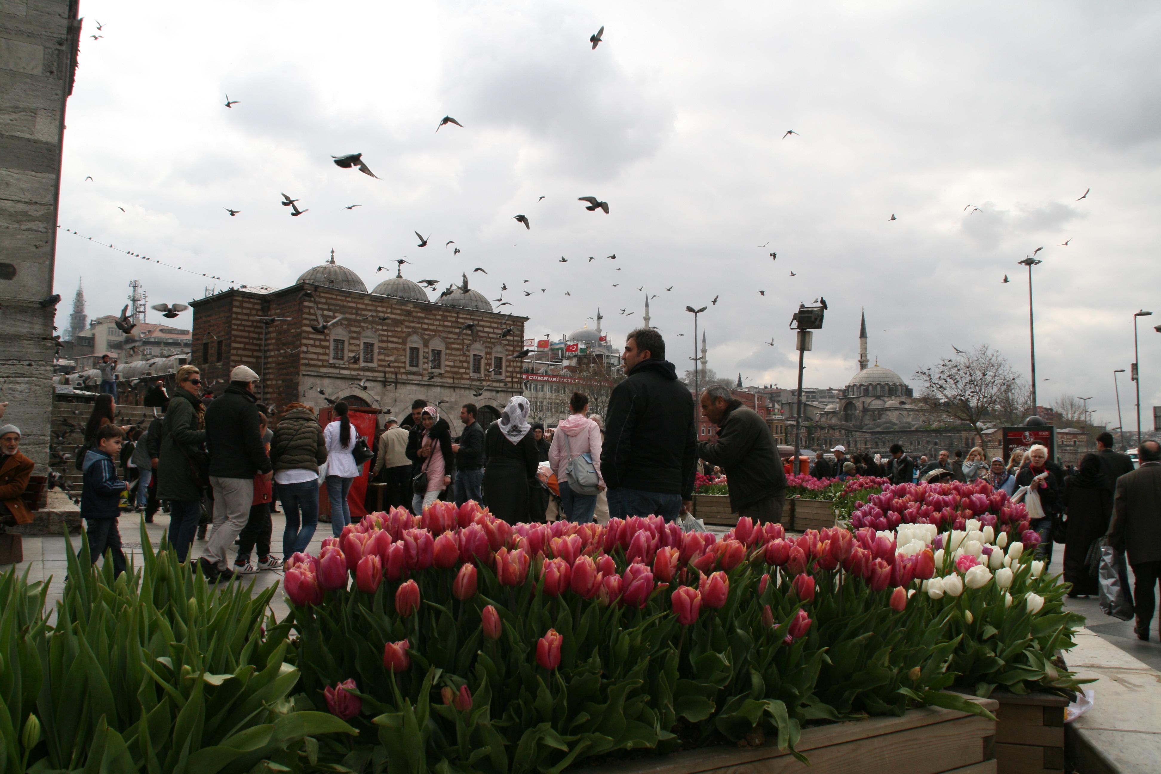 constantinopol 2011 642