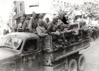 armata rosie 16