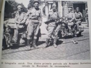 armatarosie 3